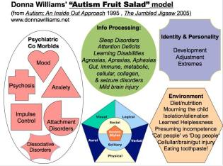 Fruit Salad Analogy Copyright D.Williams