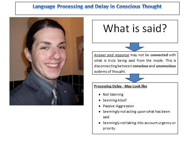 Language Processing Delay 2017
